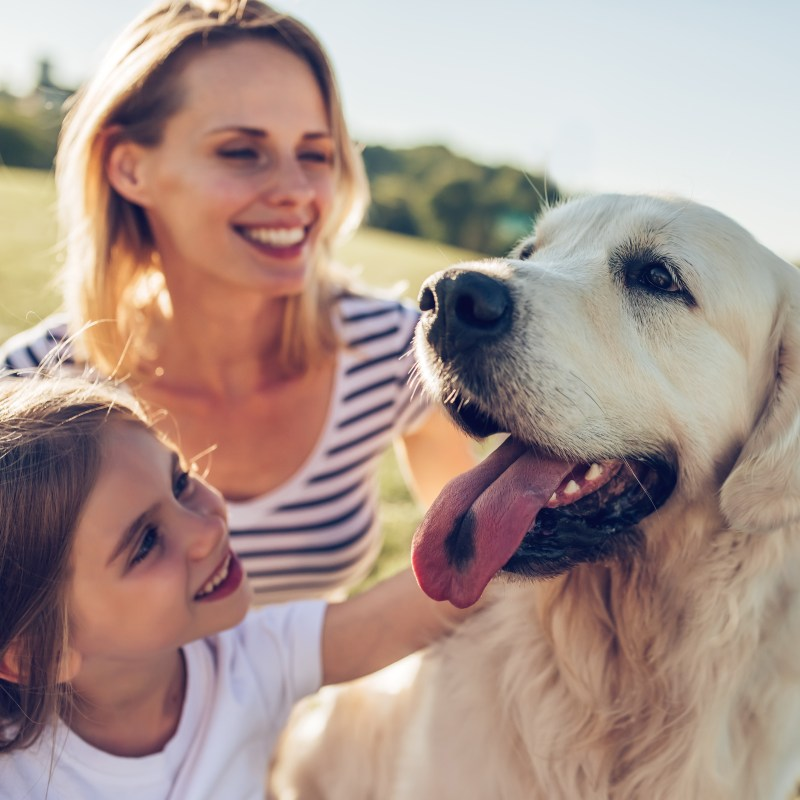 Family with dog outside