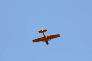 Book a Local Flight