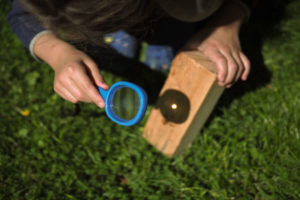 Burn Your Name into Wood with a Magnifying Glass